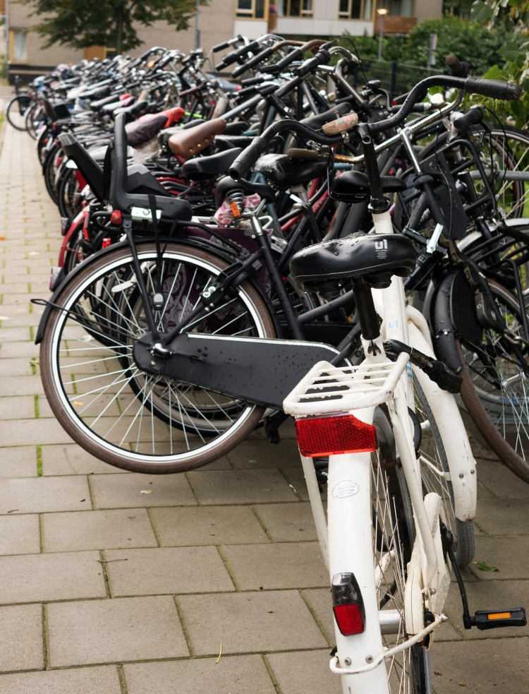 Bicycles galore